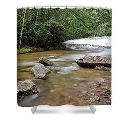 Bartlett Experimental Forest - Bartlett New Hampshire Usa Shower Curtain by Erin Paul Donovan