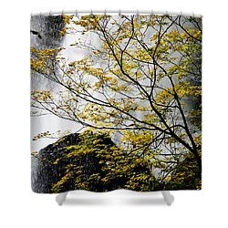 Base Of The Falls. Shower Curtain