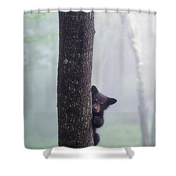 Bashful Bear Cub - Fs000230 Shower Curtain