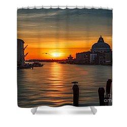 Basilica Di Santa Maria Dela Salute, Venice Shower Curtain