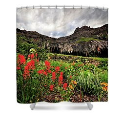 Basin Brushes Shower Curtain