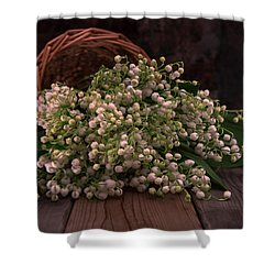 Shower Curtain featuring the photograph Basket Of Fresh Lily Of The Valley Flowers by Jaroslaw Blaminsky