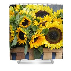 Basket Of Sunflowers Shower Curtain by Chrisann Ellis