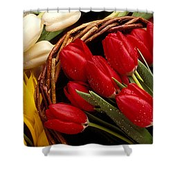Basket With Tulips Shower Curtain by Garry Gay