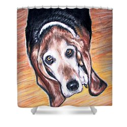 Shower Curtain featuring the painting Basset Hound  by Patricia L Davidson