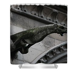 Shower Curtain featuring the photograph Bat Eared Dog Gargoyle Of Notre Dame by Christopher Kirby