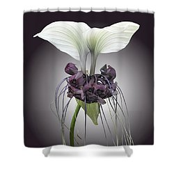 Bat Plant Shower Curtain by Denise Bird