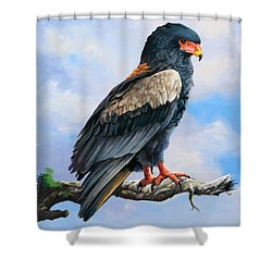 Bateleur Eagle Shower Curtain