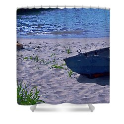 Shower Curtain featuring the photograph Bather By The Bay by David Coblitz