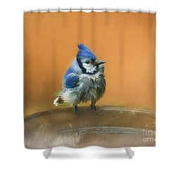 Shower Curtain featuring the photograph Bathing Blue Jay by Clare VanderVeen