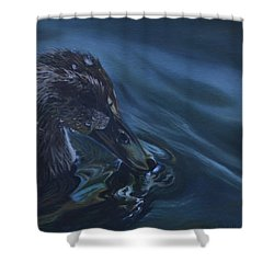 Bathing Duckline Shower Curtain