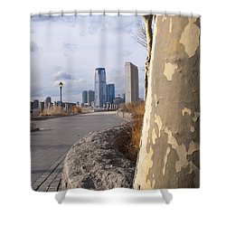 Battery Park Shower Curtain