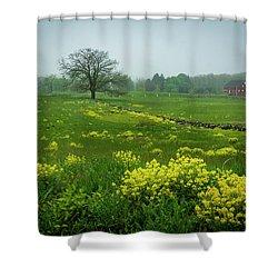 Battlefield Beauty Shower Curtain