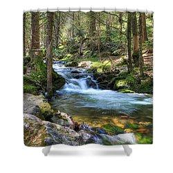 Bavarian Stream Shower Curtain