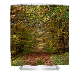Shower Curtain featuring the photograph Baxter's Hollow  by Kimberly Mackowski