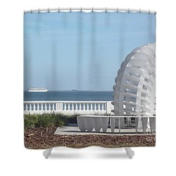Bayshore Boulevard Sculpture Shower Curtain