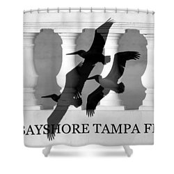 Bayshore Tampa Florida Shower Curtain by David Lee Thompson