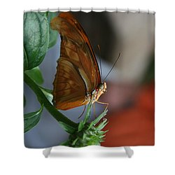 Shower Curtain featuring the photograph Be Happy by Cathy Harper