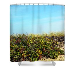 Shower Curtain featuring the photograph Be Kind To The Dune Plants by Madeline Ellis