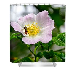 Be My Guests. Shower Curtain