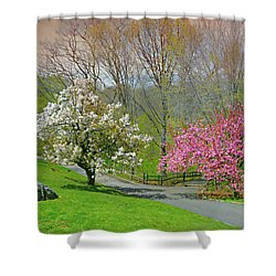 Shower Curtain featuring the photograph Be True To Yourself by Diana Angstadt