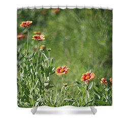 Be Wild Shower Curtain