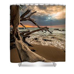 Beach 69 Shower Curtain