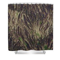 Beach Abstract 21 Shower Curtain