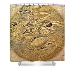 Beach Abstract Shower Curtain by Dale Stillman