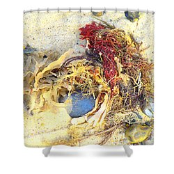 Beach Art Shower Curtain