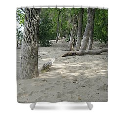 Beach At The Lake Shower Curtain