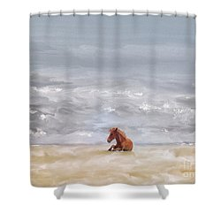 Shower Curtain featuring the photograph Beach Baby by Lois Bryan