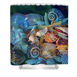 Beach Beauty 7 Shower Curtain