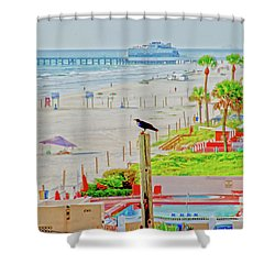 Beach Bird On A Pole Shower Curtain
