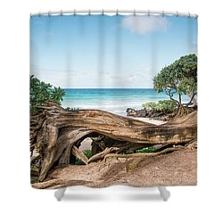 Beach Camping Shower Curtain