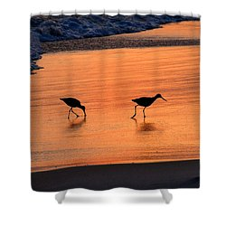 Beach Couple Shower Curtain by David Lee Thompson