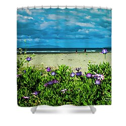 Beach Daisies Shower Curtain