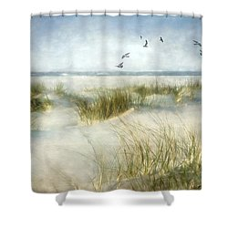 Beach Dreams Shower Curtain