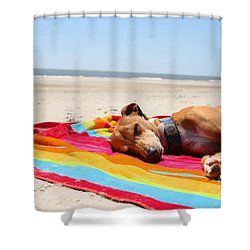 Beach Dreams Are Made Of These Shower Curtain