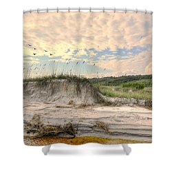 Beach Dunes And Gulls Shower Curtain by Kathy Baccari
