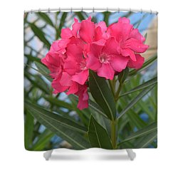 Beach Flower Shower Curtain