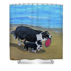 Beach Frisbee Shower Curtain