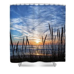 Shower Curtain featuring the photograph Beach Grass by Delphimages Photo Creations