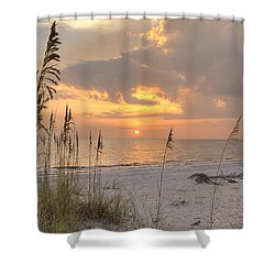 Beach Grass Sunset Shower Curtain by Sean Allen