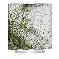 Beach Grass Shower Curtain