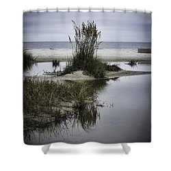 Shower Curtain featuring the photograph Beach Island by Judy Wolinsky