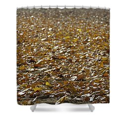Beach Of Autumn Leaves Shower Curtain
