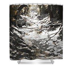 Beach Park Storm Drain Shower Curtain