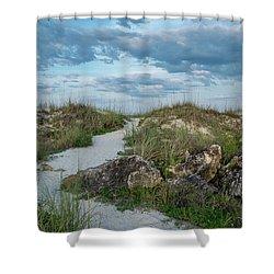 Shower Curtain featuring the photograph Beach Path by Louis Ferreira