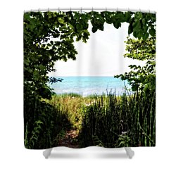 Shower Curtain featuring the photograph Beach Path With Snake Grass by Michelle Calkins